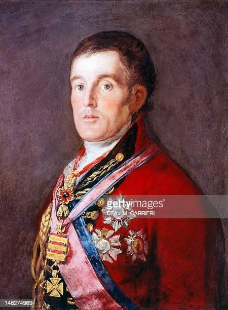 The Duke of Wellington 18121814 by Francisco de Goya San Paolo Museu De Arte De Sao Paulo