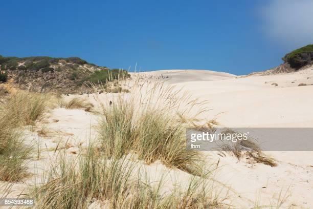 The dune of Bolonia (Cadiz Province/ Andalusia/ Spain)