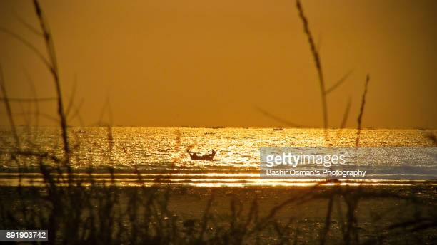 The dusky moments over the beach