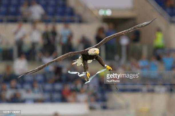 The eagle Olimpia before the Italian Serie A football match between SS Lazio and Frosinone at the Olympic Stadium in Rome on september 02 2018