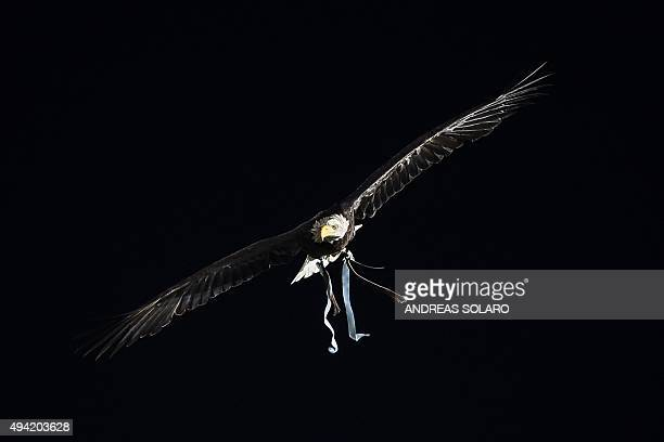 The Eagle 'Olimpia' mascot of Lazio's football team flies over the stadium before the Italian Serie A football match Lazio vs Torino on October 25...