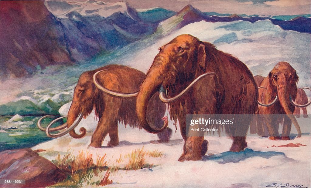 The early Ice Age : News Photo