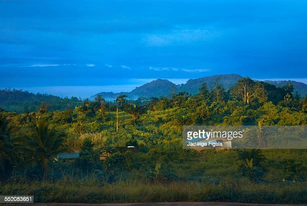 the early morning sun shines on the hill - liberia stock pictures, royalty-free photos & images