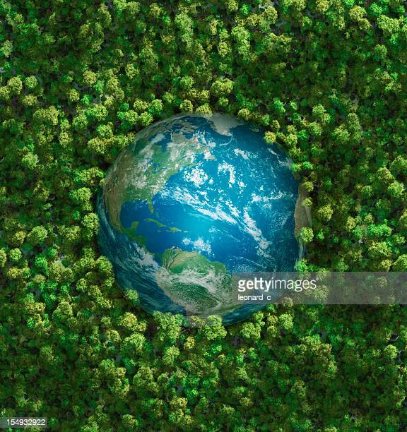 the earth embedded in green shrubbery - carbon dioxide stock photos and pictures