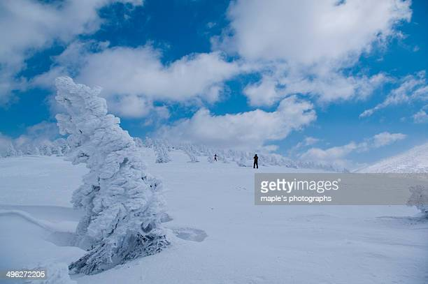 the earth of the winter - aomori prefecture stock pictures, royalty-free photos & images