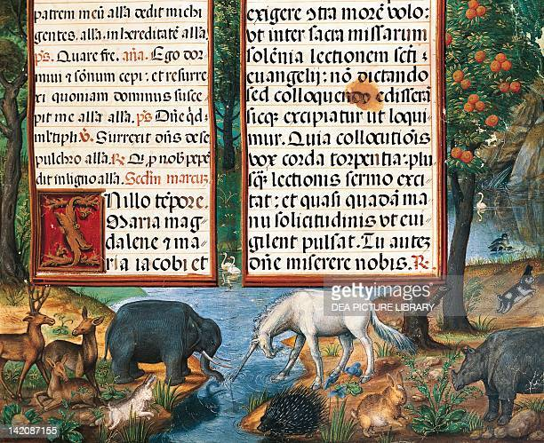The Earthly Paradise miniature from the Book of Hours from Contess of Brentiandos manuscript folio 73 16th Century