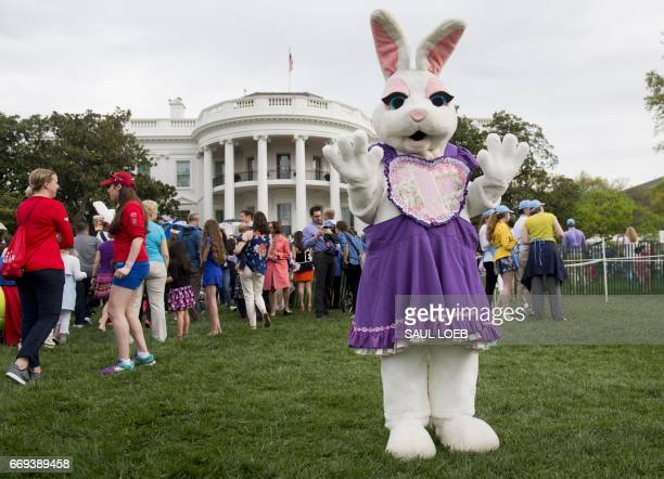 The Easter Bunny attends the 139th White House Easter Egg Roll on the South Lawn of the White House in Washington DC April 17 2017 / AFP PHOTO / SAUL...