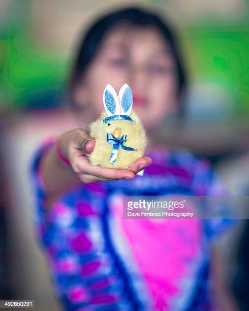 the easter offering (bunny or chick?) - mclean virginia stock pictures, royalty-free photos & images