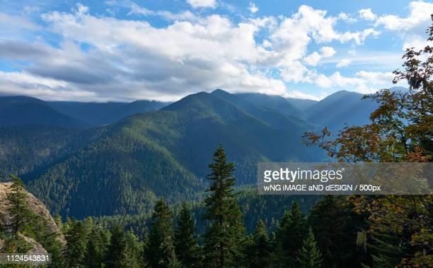 the echoing green - bigfoot stock-fotos und bilder