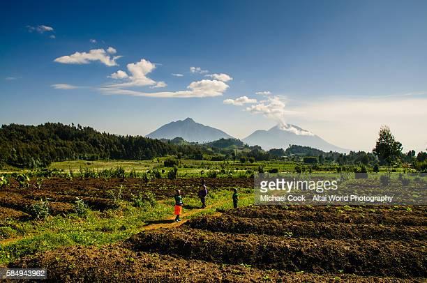 the edge of volcanoes national park - ruanda fotografías e imágenes de stock