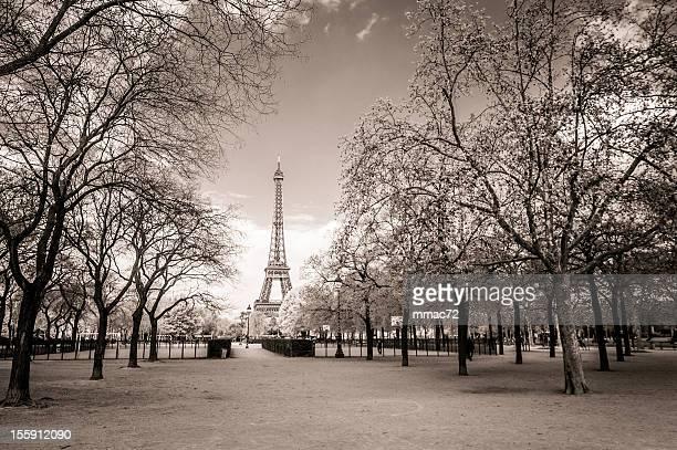 エッフェル塔、パリ - エドワード様式 ストックフォトと画像