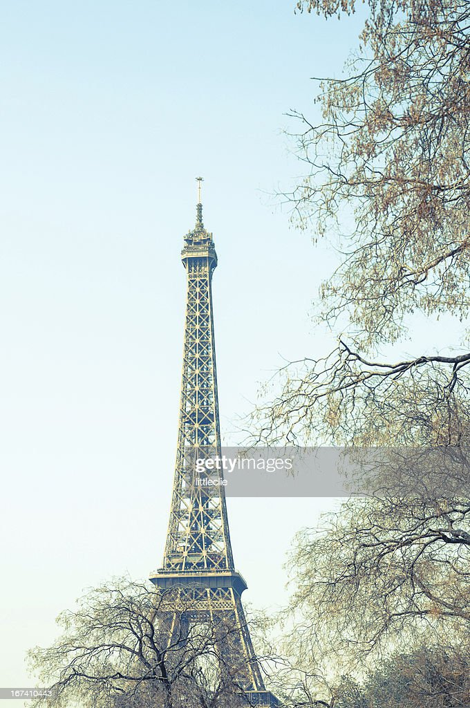The Eiffel Tower : Stock Photo