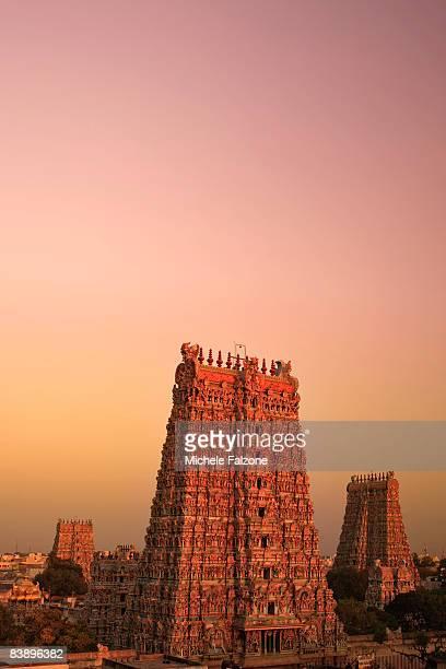 The elaborate Sri Meenakshi Indian Temple