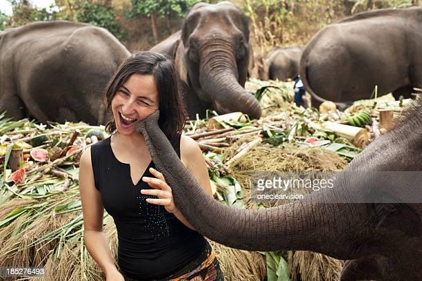 The Elephant Kiss
