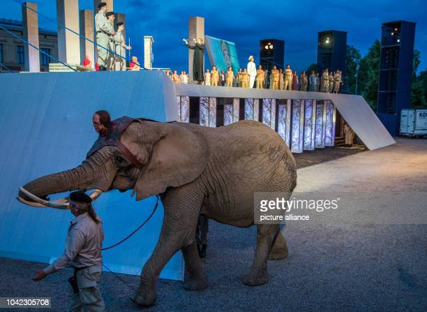 The elephant Mala walks across the stage of the Schlossfestspiele during a press rehearsal for the opera 'Aida' in Schwerin Germany 04 July 2016 The...