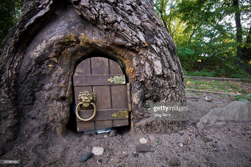 The Elf Tree : Stock Photo