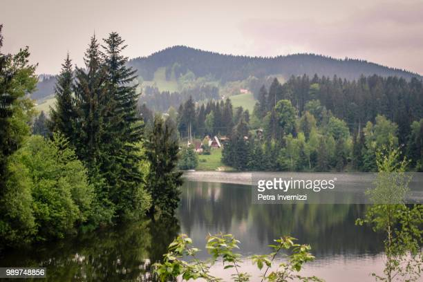 the enchanted lake - petra invernizzi stock pictures, royalty-free photos & images