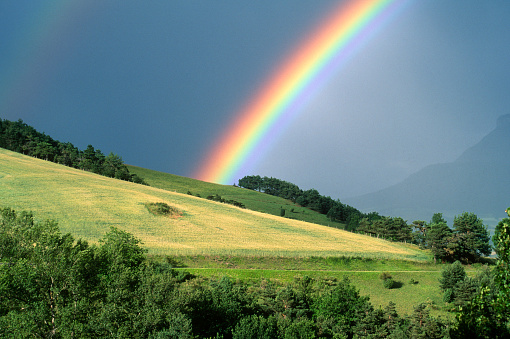 The end of a rainbow with a field in the foreground 104637612