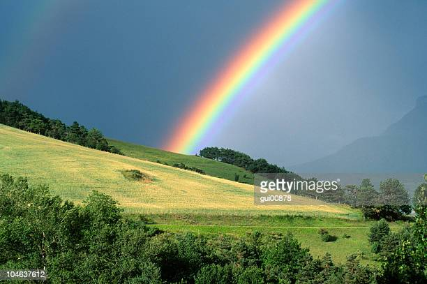 the end of a rainbow with a field in the foreground - rainbow stock pictures, royalty-free photos & images