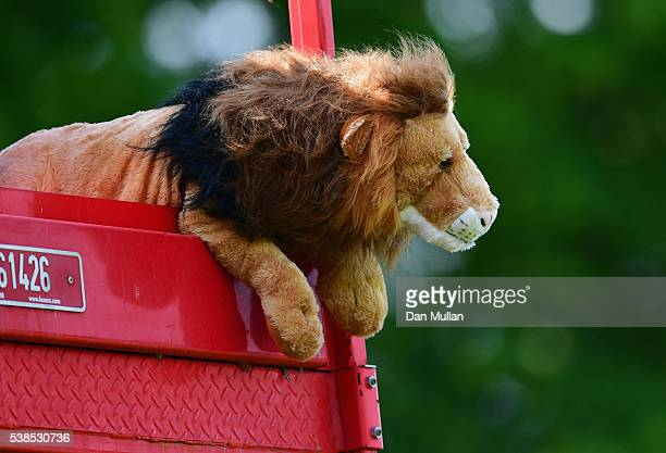 The England team tour mascot is seen during an England training session ahead of the UEFA EURO 2016 at Stade du Bourgognes on June 7 2016 in...