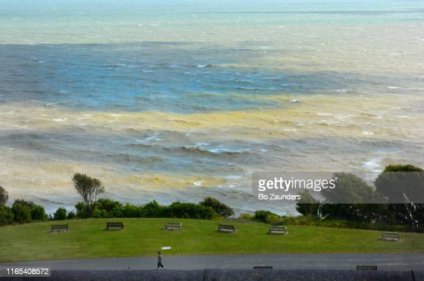 the english channel on a windy day, in early june, in folkestone, england. - bo zaunders stock pictures, royalty-free photos & images