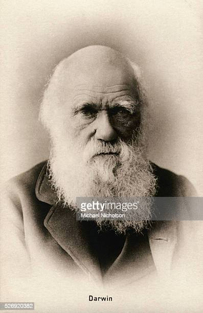 The English naturalist Charles Robert Darwin famed for his theory of evolution based upon natural selection