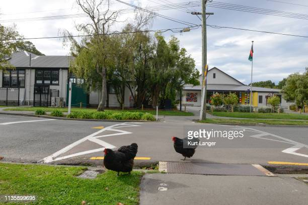 The entrance of Beckenham Te Kura o Puroto primary school on March 15 2019 in Christchurch New Zealand Schools across Christchurch were put in...