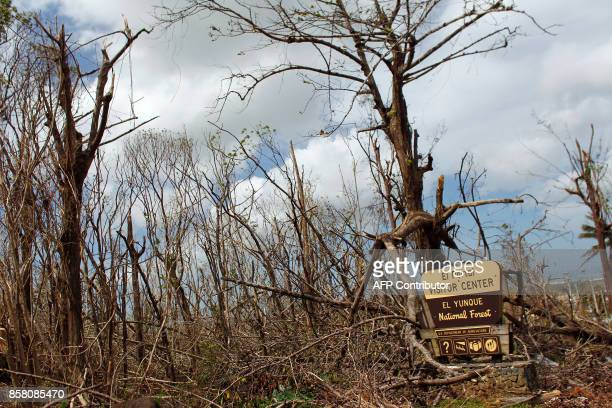 The entrance of the closed El Yunque National Forest affected by the passing of Hurricane Maria is seen in Luquillo Puerto Rico on October 4 2017 US...