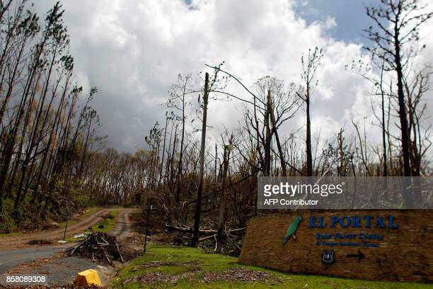 The entrance of the closed El Yunque National Forest damaged by the passing of Hurricane Maria is seen in Luquillo Puerto Rico on October 4 2017 US...