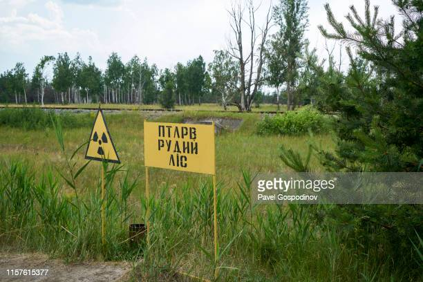 the entrance of the ghost city of pripyat, not far from the chernobyl nuclear power plant, chernobyl, ukraine - chernobyl stock pictures, royalty-free photos & images