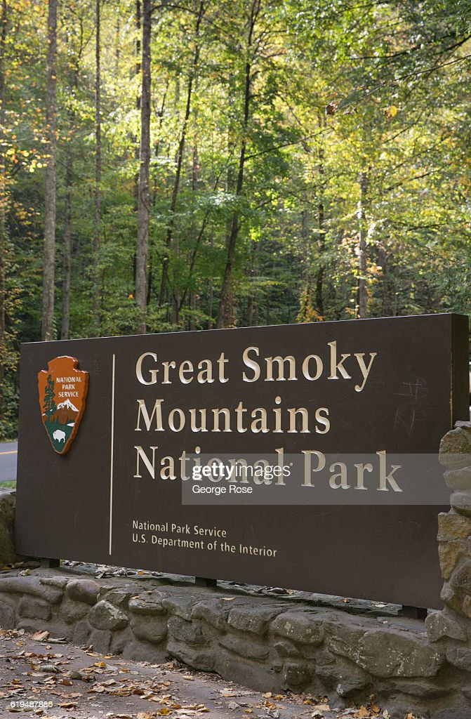 Touring Great Smoky Mountains National Park : News Photo