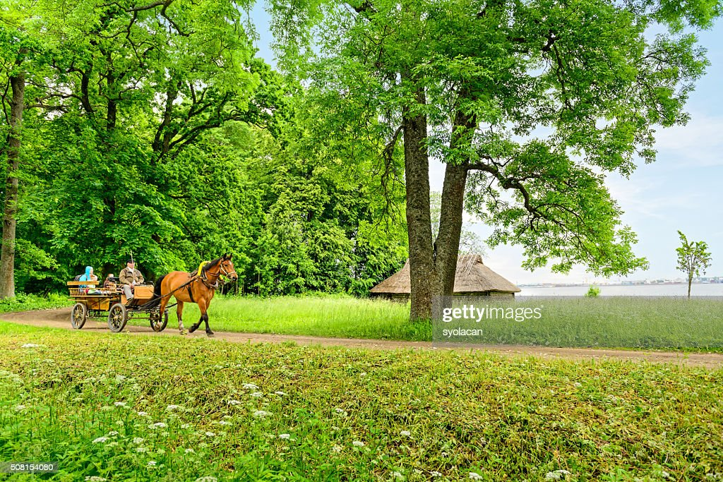 The Estonian Open air Museum : Stock Photo