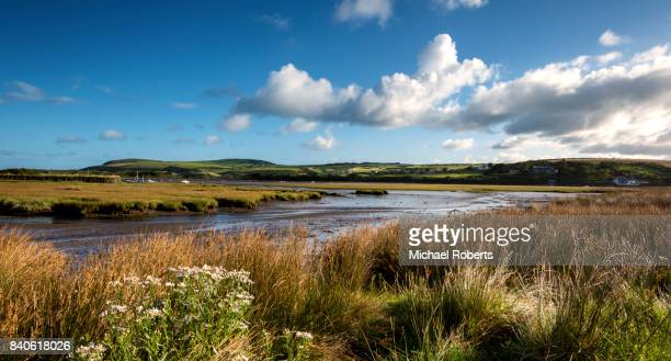 the estuary of the river nevern (afon nyfer) at newport, pembrokeshire - sumpmark bildbanksfoton och bilder