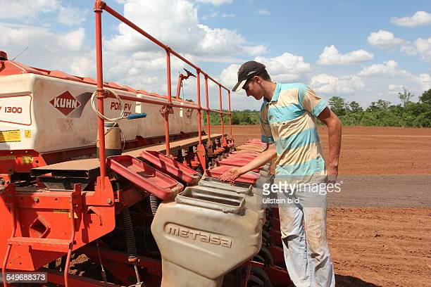 The ethnic german mennonit and farmer Diedrich Hildebrand He cultivate genetically corn and soybeans