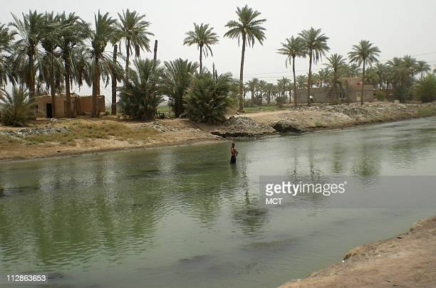 The Euphrates River flows through Iraq's Mishkhab village where in the past the river would overflow it's banks to water the fields but no longer