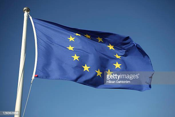 the european union flag - european union flag stock photos and pictures