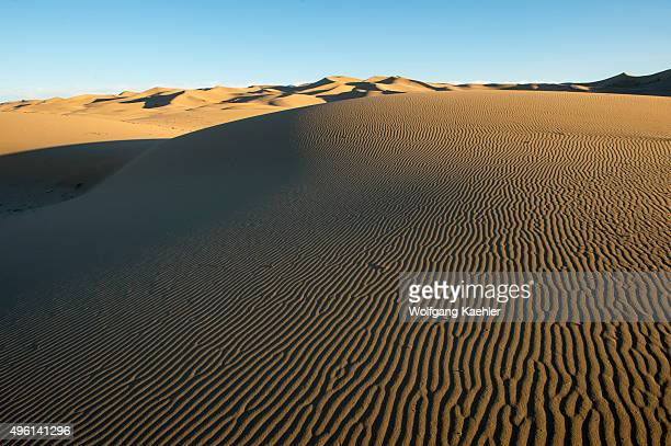 The evening light brings out the ripples in the sand of the Hongoryn Els sand dunes in the Gobi Desert in southern Mongolia