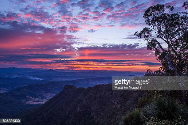 The evening scene from Moonlight Crag, Lamington National Park, Australia