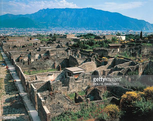 The excavations at Pompeii from the Tower of Mercury Campania Roman Civilisation 1st Century