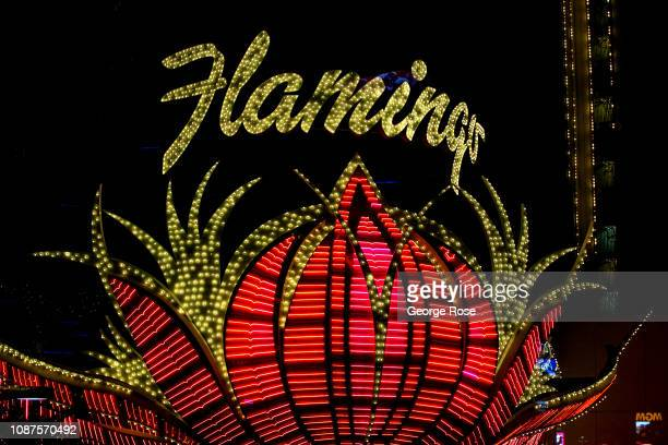 The exterior neon lights of the Flamingo Hotel Casino are viewed on December 17 2018 in Las Vegas Nevada During the Christmas and New Year holidays...
