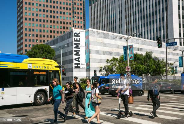 The exterior of the Hammer Museum located on Wilshire Blvd in Westwood Village is viewed on August 7 2018 in Los Angeles California Millions of...