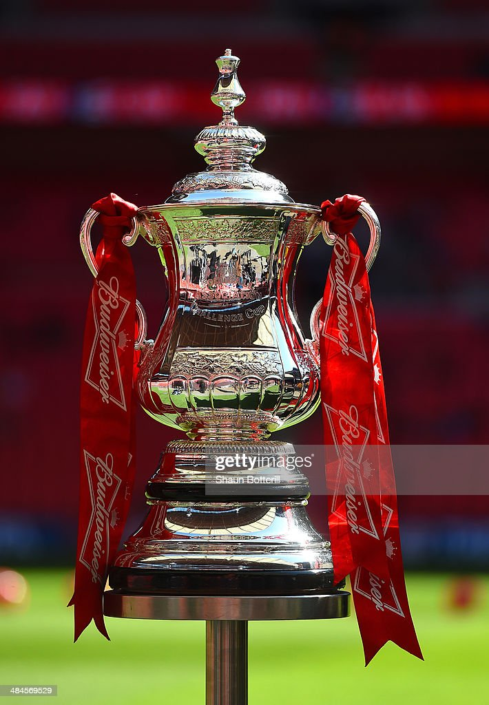 The FA Cup is seen pitchside ahead of the FA Cup with Budweiser semi-final match between Hull City and Sheffield United at Wembley Stadium on April 13, 2014 in London, England.