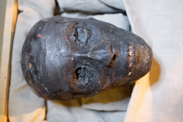 The face of Pharaoh Tutankhamen is displayed in a climate-controlled case at his tomb in the Valley of the Kings, close to Luxor, 500 kilometres...