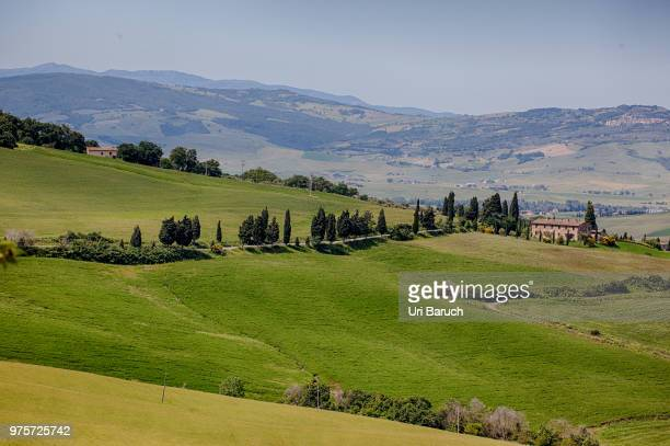 the face of tuscany (1) - barulho stock pictures, royalty-free photos & images