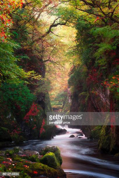 the fairy glen, betws-y-coed, snowdonia, wales - snowdonia stock photos and pictures