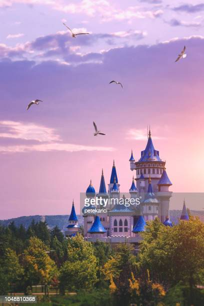the fairytale castle in the sunset - palace stock pictures, royalty-free photos & images