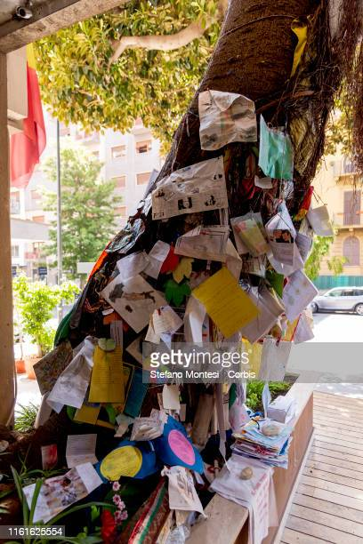 The Falcone tree located in front of the entrance to the building where Judge Giovanni Falcone killed by the mafia in 1992 lived in the very central...