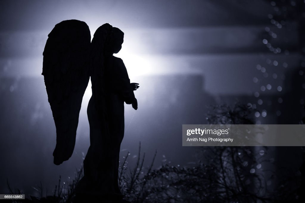 The Fallen Angel : Stock Photo