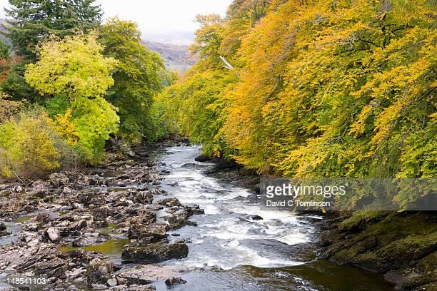 The Falls of Dochart in autumn.