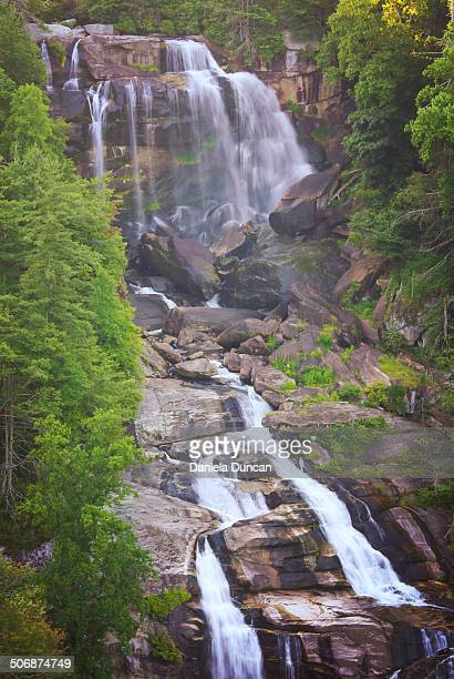 the falls - escarpment stock pictures, royalty-free photos & images